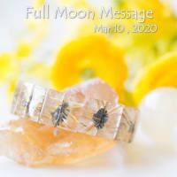 ✤2020年3月10日おとめ座の満月から3月24日再スタートのおひつじ座の新月へ向かって・・・✤