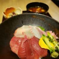近畿大学水産研究所  近大マグロと選抜鮮魚の海鮮丼 #