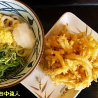 丸亀製麺東住吉店のぶっかけうどん+無料大根おろし