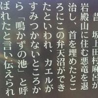 東松山 岩殿山弁天沼 (鳴かずの池)