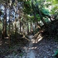 秋深まる紅葉の比地の滝 2019.11.16