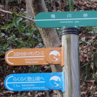 生駒山系縦走路・私市駅~生駒山頂~高安山(三年連続の生駒山系縦走路の歩き初め)