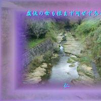 『 虚仮の世も拒まず同ぜず冬の川 』物真似575zqm1903