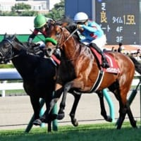 有馬記念馬・ブラストワンピースが復活V!札幌からいざ世界へ!