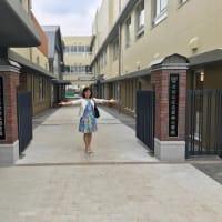 新しくなった「世田谷区立若林小学校」と「世田谷区立世田谷保育園」