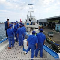 遠洋カツオ一本釣船の見学