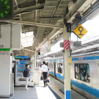 横浜駅ですれ違う特急「成田エクスプレス」 (2019年8月 神奈川、東京旅)