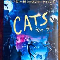 映画 『スター・ウォーズ/スカイウォーカーの夜明け』&『CAT'S(キャッツ)』
