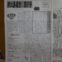 8月27日のじゅごん茶話会の報告です😊