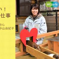 トークイベントWEcafe vol.81「飼育だけじゃない!動物園のお仕事」3月27日(土)Zoom開催