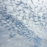 緊急事態宣言が今日解除…( ̄へ ̄| | |) ウーム  そして今日の夢と雲…