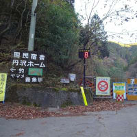 丹沢 三ノ塔 ヨモギ尾根 (2020.11.23)