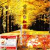 国営昭和記念公園の黄葉紅葉2014