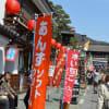 善光寺と松城城址の桜