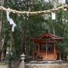 熊野古道 中辺路(赤木越え、大日越え)、七越の峰