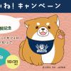 goo botmaker「見習い看板犬 おかか」LINEアカウント公開記念🐕 Instagramフォロー&いいね!キャンペーン✨