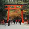 京都下鴨神社 まだ間に合う七五三詣で 京都・大阪・神戸・の出張撮影