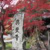 2011 興聖寺の紅葉