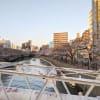 大岡川の桜 2021 その2
