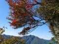 2013年寒風山の紅葉の始まり