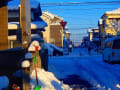 平成30年1月の雪景色