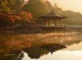 奈良の紅葉2013