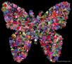 Shape Collage & Desktop Album