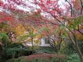 京都・アサヒビール大山崎山荘