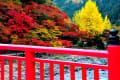 ここは愛知の紅葉スポットことしの香嵐渓の紅葉景色。