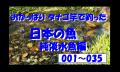 タナゴ竿で釣った魚 日本編 純淡水魚の部