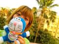 カルカッタの、あの猫 【2012~2015】