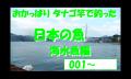 タナゴ竿で釣った魚 日本編 海水魚の部Ⅰ