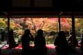紅葉めぐり2014 圓光寺
