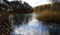 五色沼を歩く 2.赤沼から弁天沼