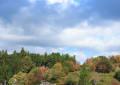 三河湖・茶臼山の紅葉