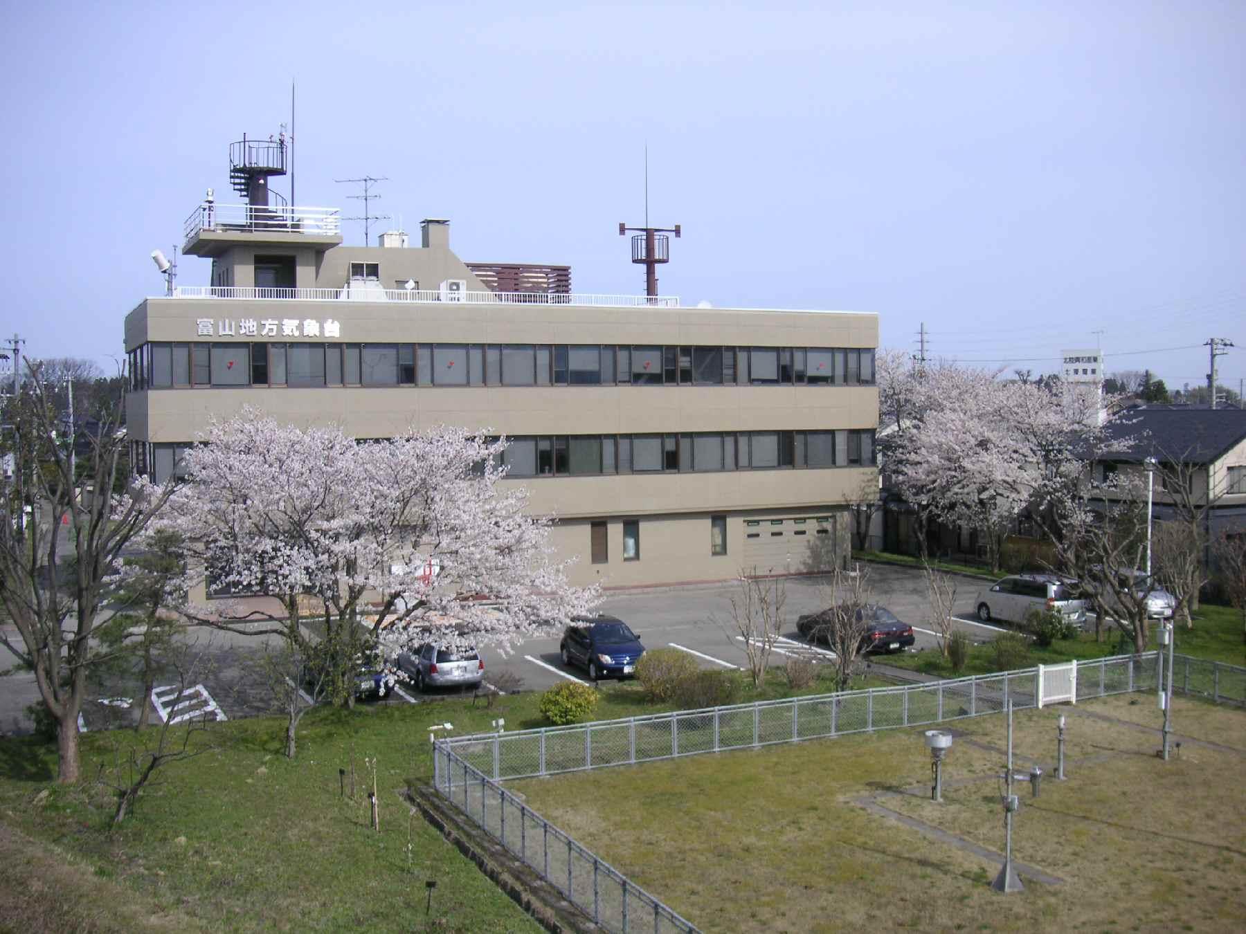 富山地方気象台 ソメイヨシノ標...