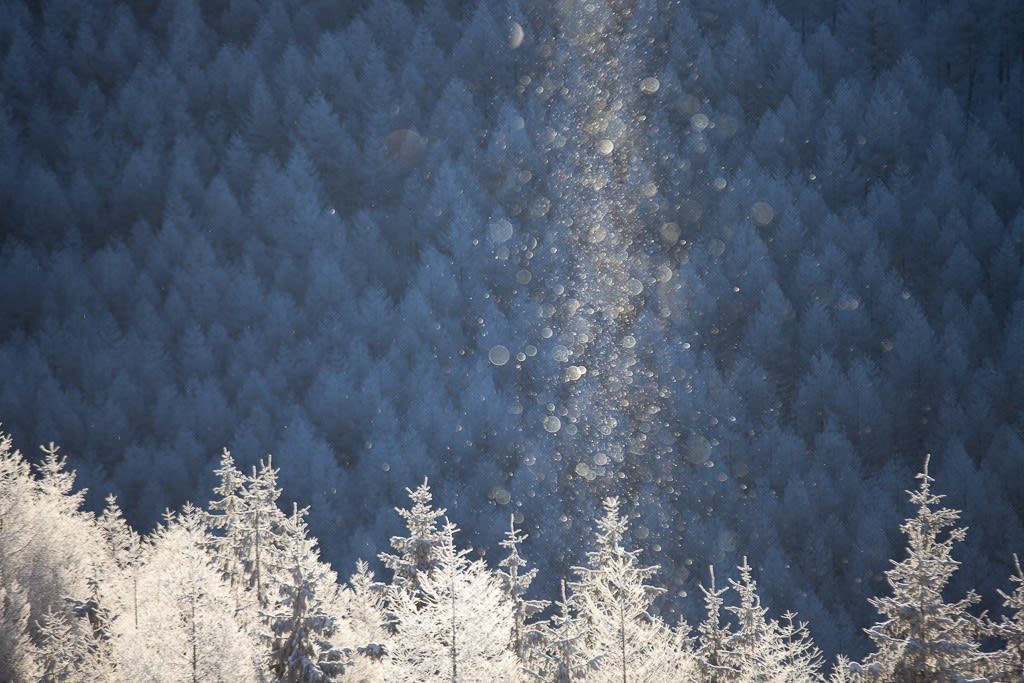 霧氷とダイヤモンドダストとサンピラーの写真