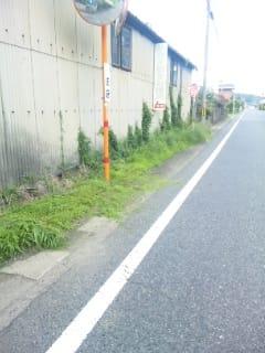 バス停の草刈り
