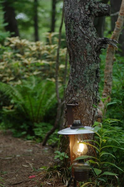 ランプの径