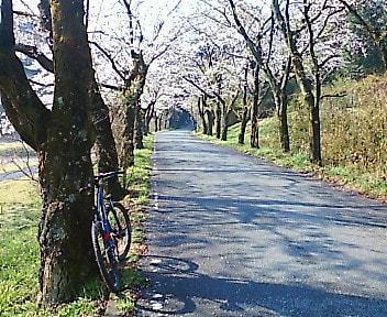 太平山 ジオキャッシング