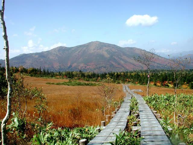 秋の横田代と至仏山