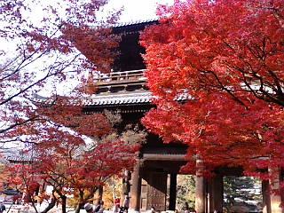 続いて、南禅寺三門です。