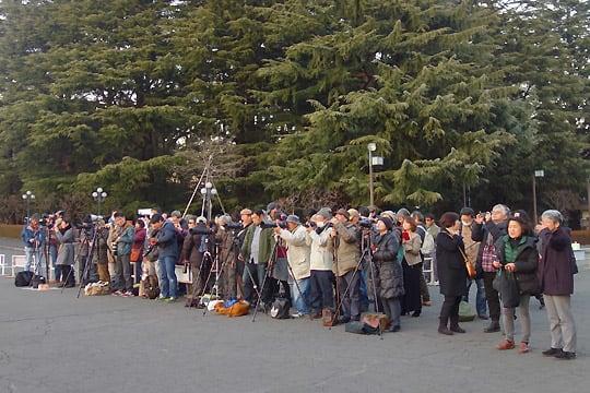 聖徳記念絵画館前からダイヤモンド富士を眺める人々