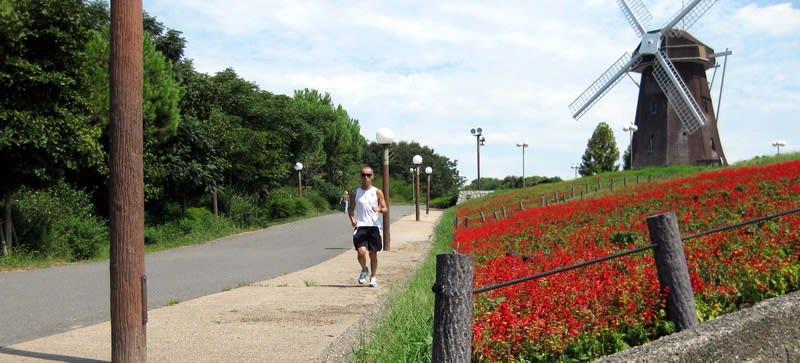 Running_on_holland_hill