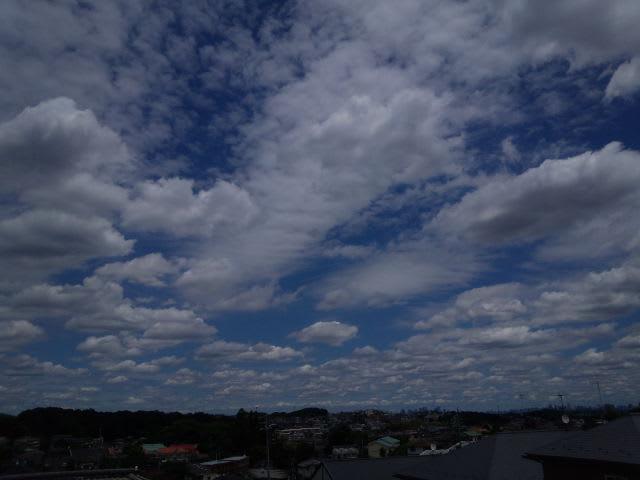 餃子の様な雲を浮かべたような空