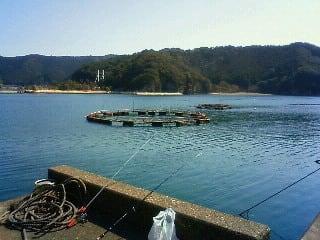 2012年3月3 日 in 三重・錦漁港 ...