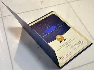 iibc award of excellence 転妻よしこ の 道楽日記