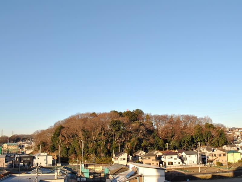 01月12日 根岸台