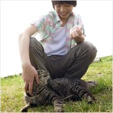 「野良猫に餌をやるのはいけないこと? ←こ」の質問画像