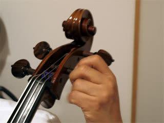 オリーブの調弦 - Cellologue